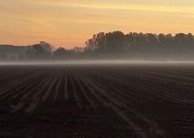 uitzicht op t Brabantse land